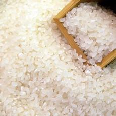 厂家批发 优质大米 原香晴米