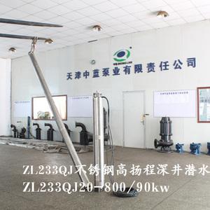 精铸不锈钢304/316深井泵 不锈钢深井泵选型