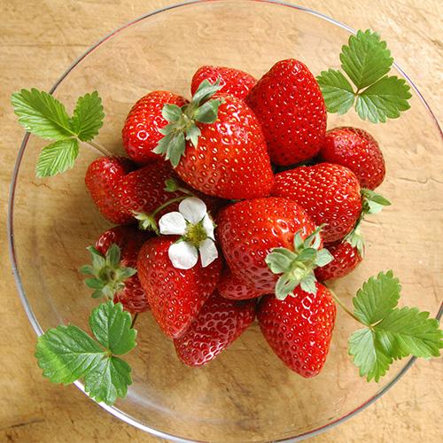 大自然的味道世宇甜甜 草莓