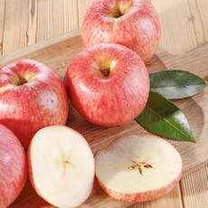 预售2017安塞山地红富士水果纸袋苹果价格电议