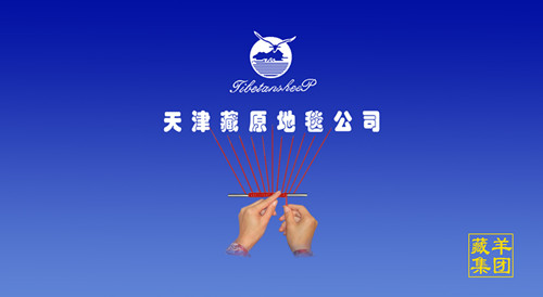天津市藏原地毯有限公司