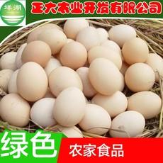 厂家直销正宗农村散养土鸡蛋农家自养新鲜初生蛋放养野柴笨草鸡蛋