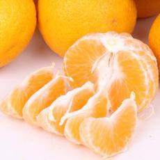桔柚自家果园自产自销批零兼售有机农家水果