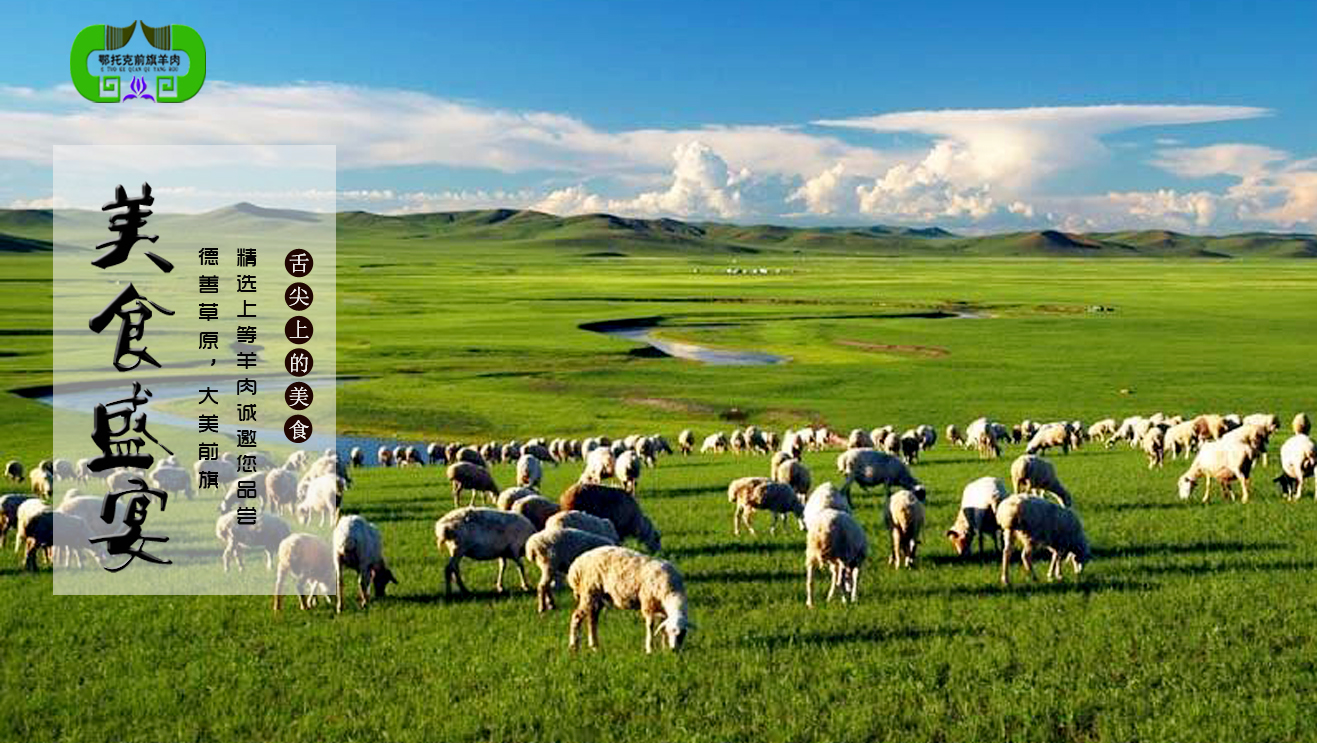 中国羊肉产业网