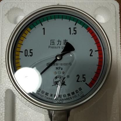 天仪不锈钢耐震压力表厂家批发YN-100B