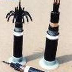 塑料绝缘控制电缆 塑料绝缘控制电缆