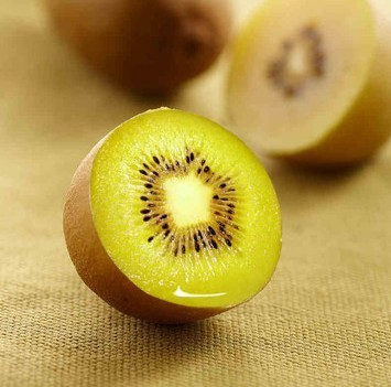 供应 直销新西兰进口水果奇异果 美味黄肉猕猴桃 口感香甜奇异果