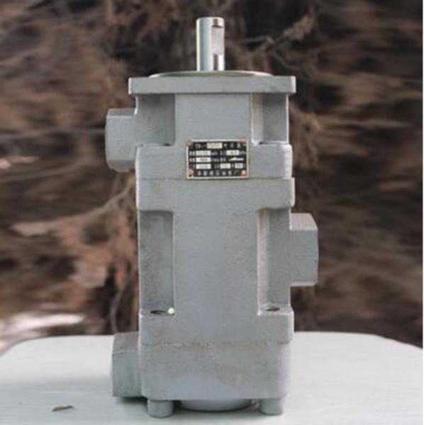 供应华为 Huawei YB1-25/25 叶片泵 液压油泵 YB1系列