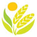 巢湖市绿园生态家庭农场