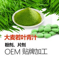 大麦若叶青汁粉批发 大麦青汁OEM加工贴牌 厦门专业生产厂家