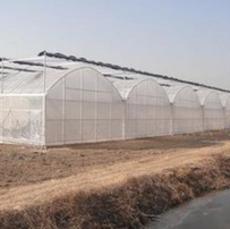 供应 单体大棚 阳光温室大棚 蔬菜大棚