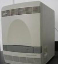 ABI-7500定量PCR仪