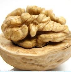 核桃供应 核桃交易 鲜核桃 1600g薄皮核出售桃