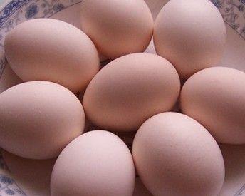 供应特级农大粉壳鸡蛋