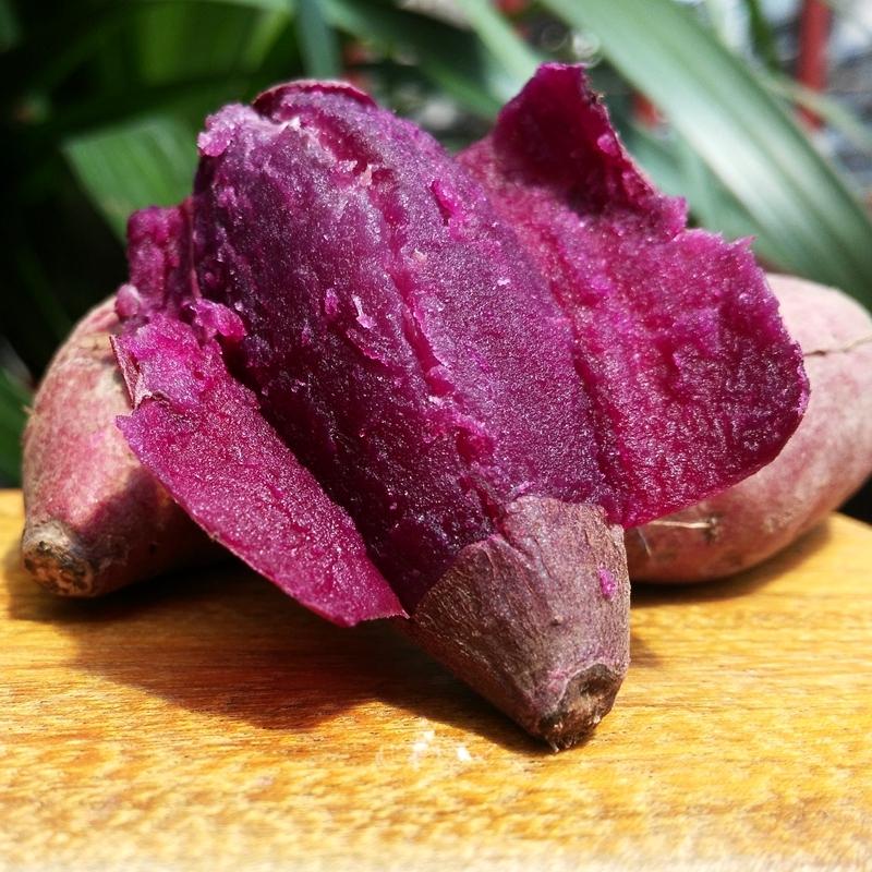 包邮新鲜泗水苗馆紫薯生地瓜 有机紫薯 新鲜甘薯红薯农家自产