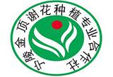 宁陵县金顶谢花酥梨专业合作社