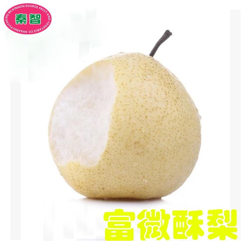 陕西特产蒲城酥梨自有基地种植好吃甜多汁有机新鲜水果富微酥梨