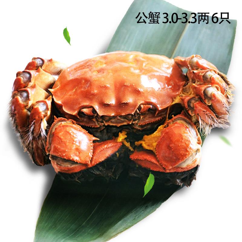 现货大闸蟹 六月黄 鲜活螃蟹 母2.5-2.2两 公3.3-2.8两礼盒装