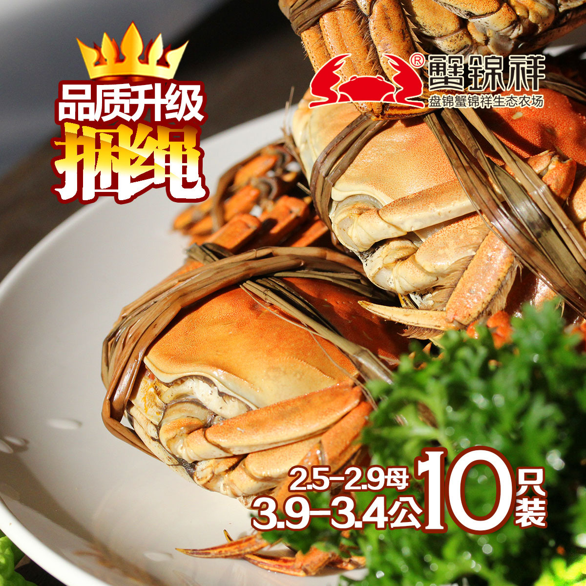 现货蟹王岛大闸蟹公螃蟹3.5-3.8两8只装