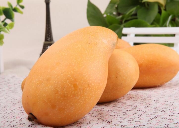 芒果挑选有道有点皱褶会更甜