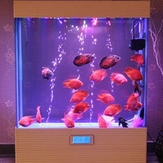 吧台落地式屏风隔断水族箱 欧式观赏鱼缸水族箱