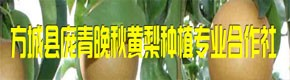 方城县庞青晚秋黄梨种植专业合作社