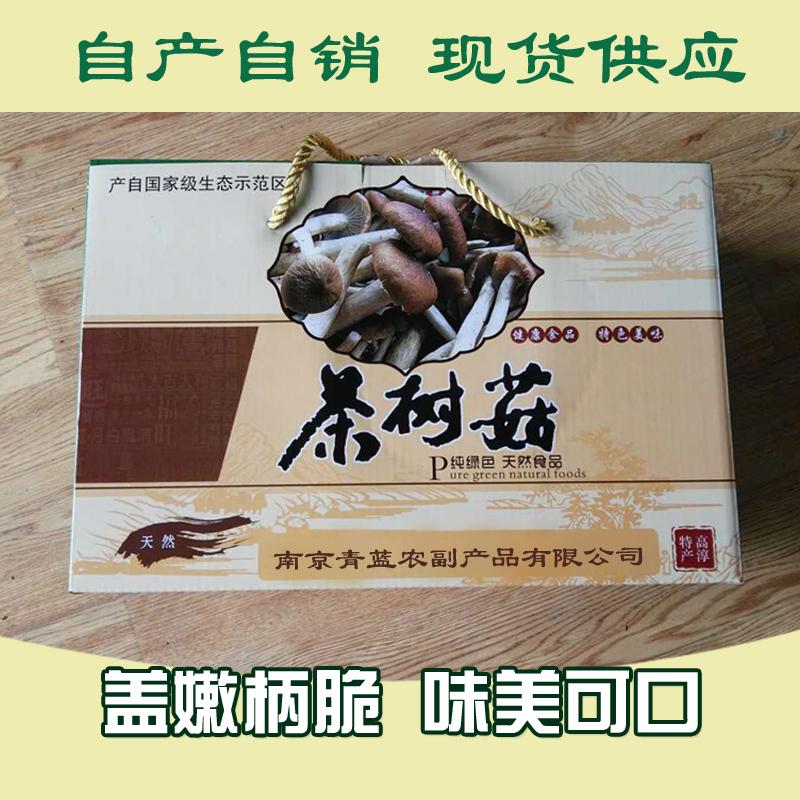 土特产供应茶树菇食用菌 精选无碎茶树菇干货