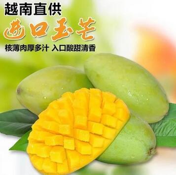 供应 越南玉芒芒果香芒5斤大小青皮芒新鲜热带水果