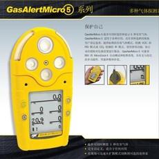 M5五合一气体测漏仪  BW混合气体检测仪