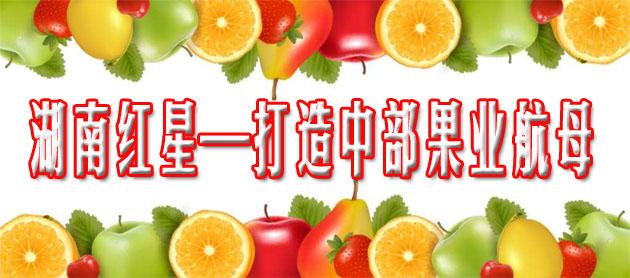 2016中国(国际)水果大会