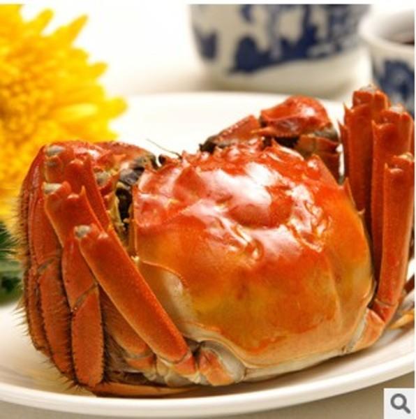 苏州阳澄湖大闸蟹 螃蟹公3.8-3.5母2.8-2.2礼盒包装5对装