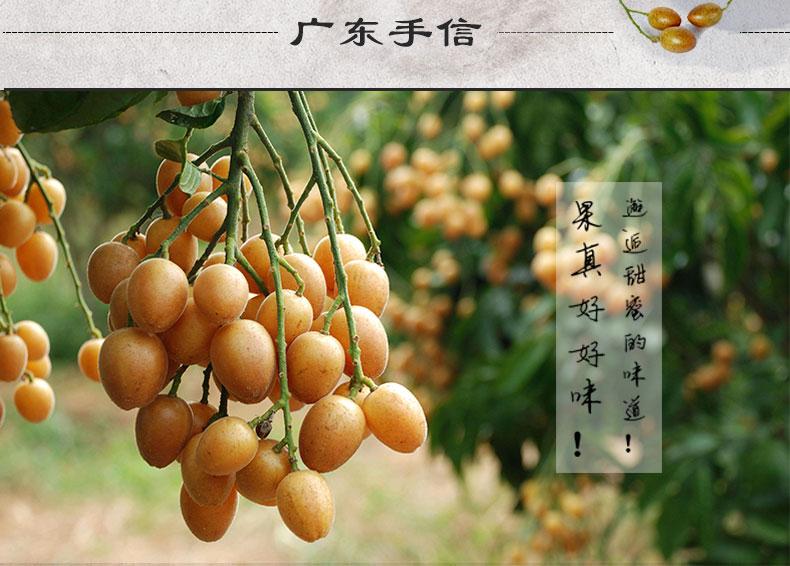 湖塘特产郁南曲奇特色美食康美先无核黄皮传统常州粤西哪家好吃美食的图片