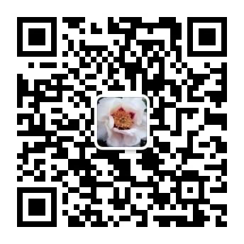 中国油用牡丹产业网