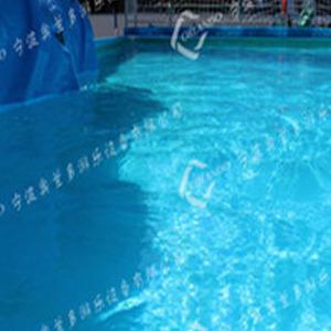 奥兰多让您游泳更放心
