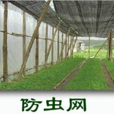 河北金洲丝网制品厂供应防虫网