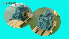 HSNF440-46三螺杆泵装置组