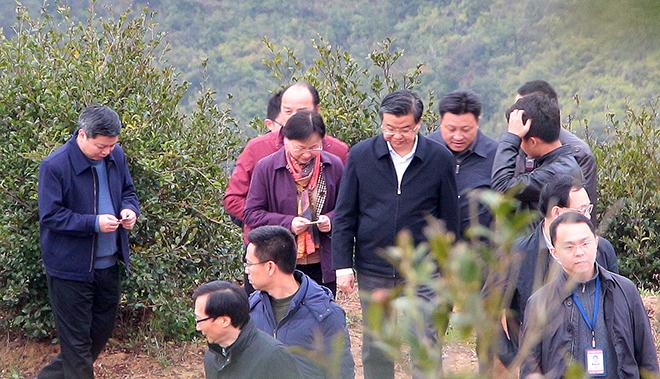福建省委副书记、福州市委书记倪岳峰等领导调研丰盛农林