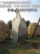 直销园林石 景观石 造景石头 广场石头