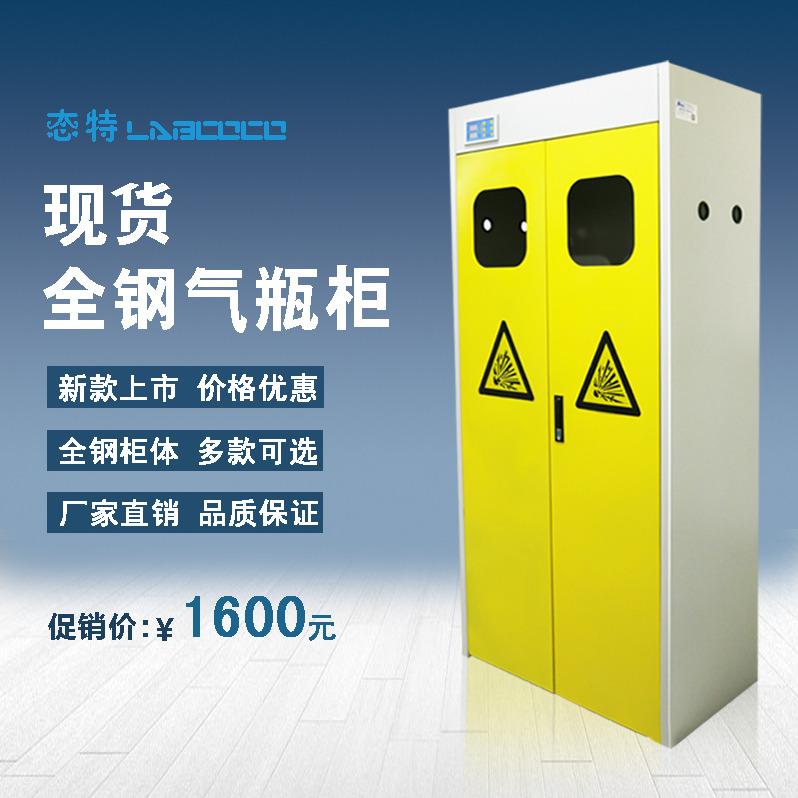 气瓶柜 防爆柜 全钢防爆气瓶柜 可供检测报告 化学品安全柜 实验室单瓶气瓶 实验室双气瓶柜 厂家直销