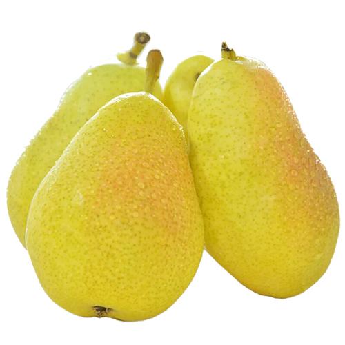 新疆库尔勒香梨特级 新鲜水果梨子脆甜多汁