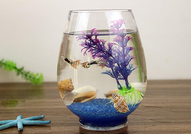 透明圆缸 圆形金鱼缸 生态创意 玻璃鱼缸 金鱼缸 水培缸花瓶 特价