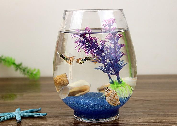 透明圆缸 圆形金鱼缸 生态创意 玻璃鱼缸 金鱼缸 水培缸花瓶