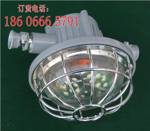 矿用隔爆型LED照明灯DGS36/127L