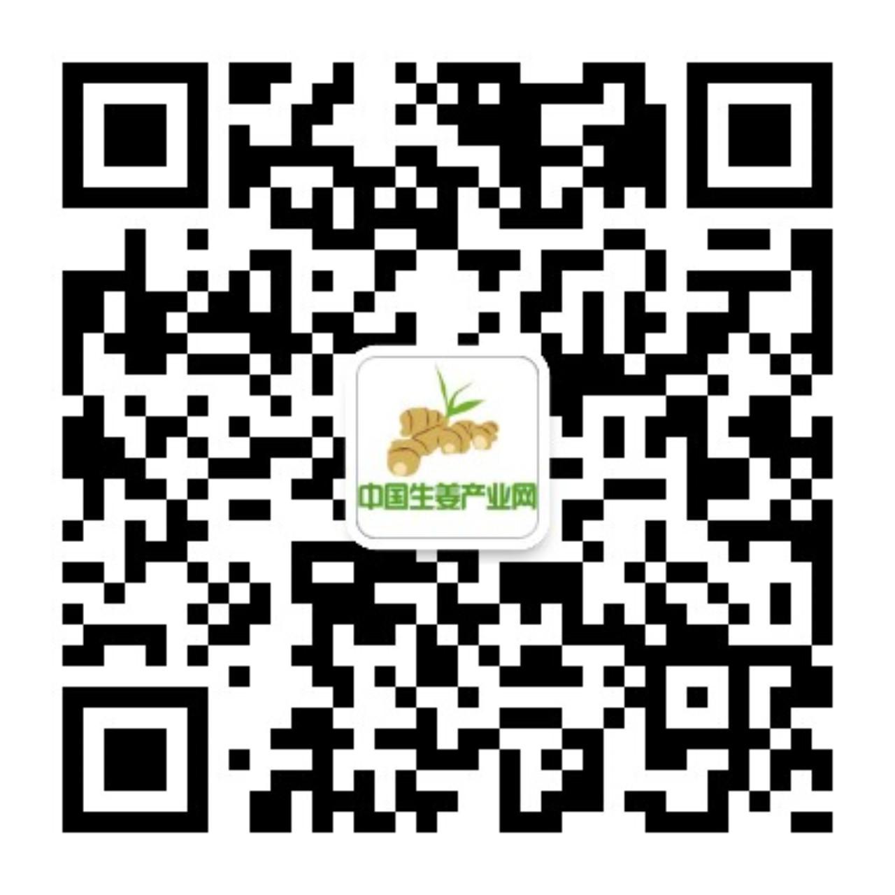 中国生姜产业网