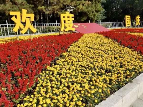 西安品牌花卉绿植租赁租摆公司