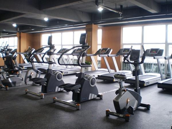 黑龙江省健身休闲哈尔滨健身休闲健身器材跑步机椭圆机健身车健身车台阶器27