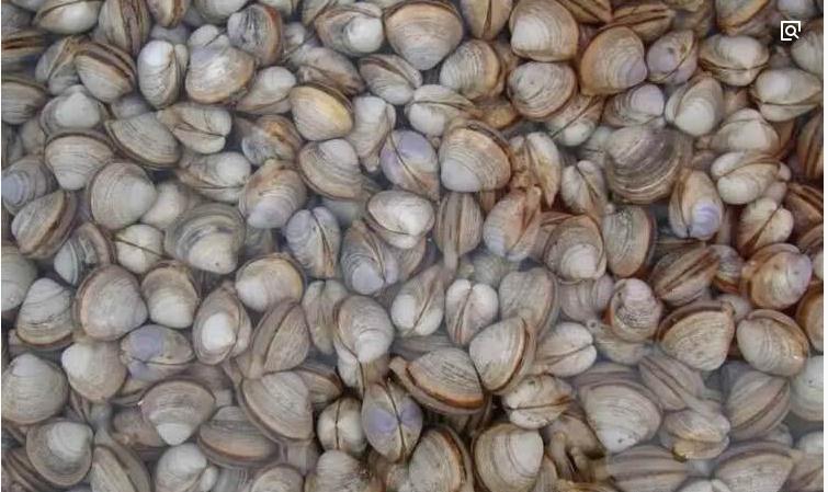 北京市食材配送公司推荐,果蔬配送价格