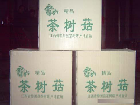 茶树菇(lz-0168)