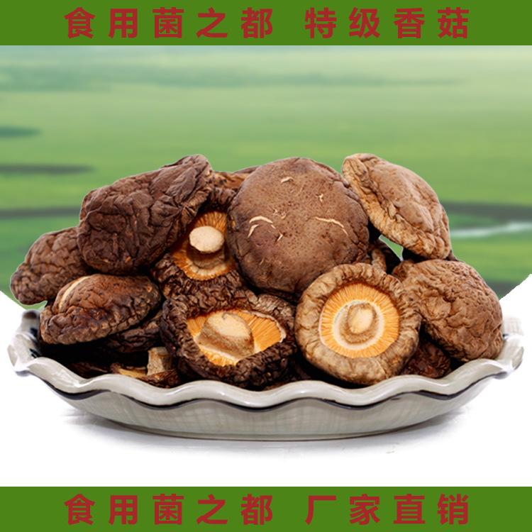 香菇批发特级剪脚无根肉厚 规格2-2.8CM小干香菇 2016新货