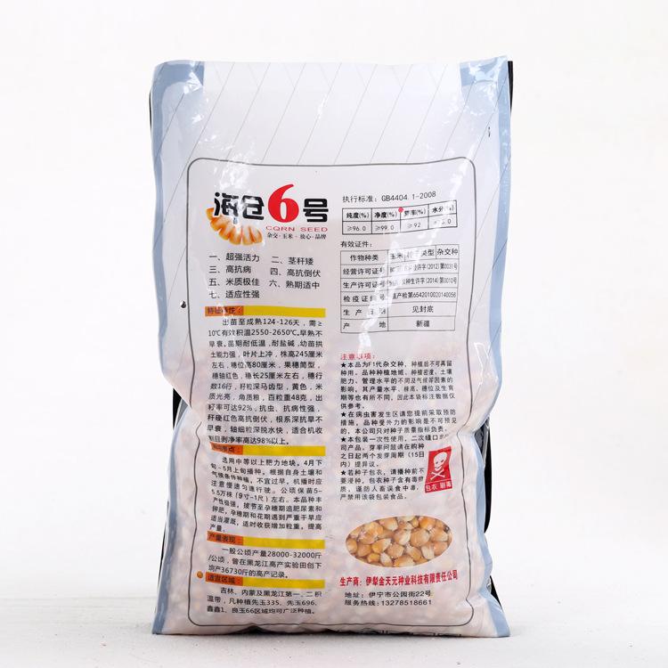 玉米籽特价海仓6号抗四杂交玉米种子高抗病茎秆矮抗倒伏适应性强1
